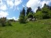 avstrija-alpi_www-austriadeluxe-at
