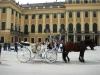 vena-excursija_www-austriadeluxe-at