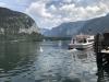 excursia-v-salzkammergut_www-austriadeluxe-at