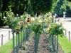 schoenbrunn-park-v-vene_www-austriadeluxe-at
